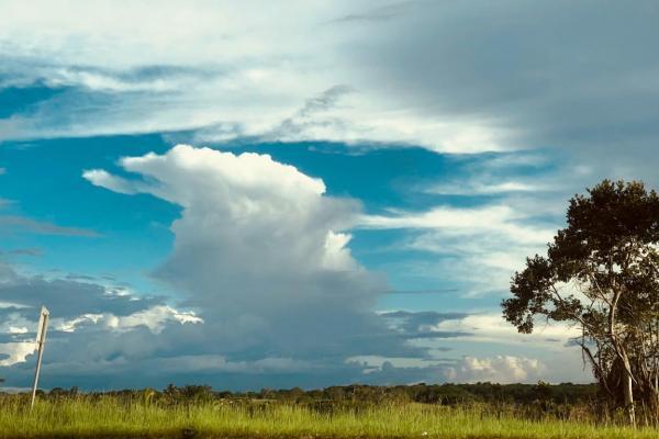 Déménagement en Guyane - Aux Déménageurs Méditerranéens
