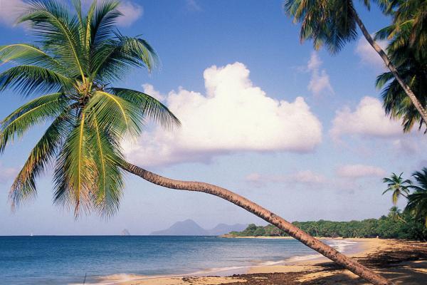 Déménagement vers la Martinique (972)