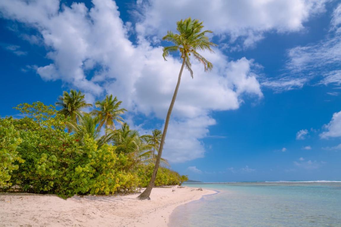 Demenager en Guadeloupe - Aux déménageurs Méditerranéens