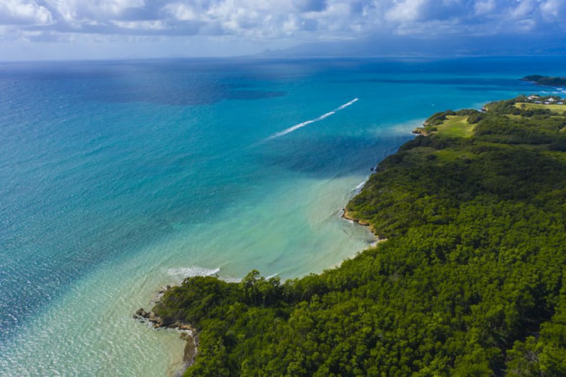 Guadeloupe - Déménagement Outre Mer - professionnels déménageurs